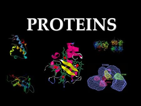 PROTEINS Proteins Composed mainly of –Carbon –Hydrogen –Nitrogen.