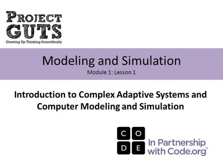 Modeling and Simulation Module 1: Lesson 1 Introduction to Complex Adaptive Systems and Computer Modeling and Simulation.