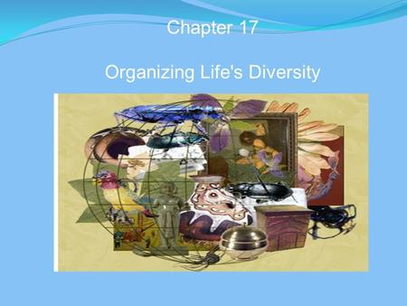 Chapter 17 Organizing Life's Diversity. A. How Classification Began 1. Classification - grouping of objects or information based on similarities 2. Taxonomy.
