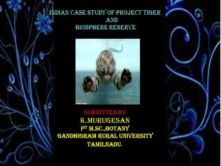 INDIAN CASE STUDY OF PROJECT TIGER AND BIOSPHERE RESERVE Submitted by K.MURUGESAN I st M.Sc.,BOTANY GANDHIGRAM RURAL UNIVERSITY TAMILNADU.