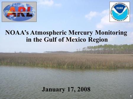 NOAA's Atmospheric Mercury Monitoring in the Gulf of Mexico Region January 17, 2008 1.