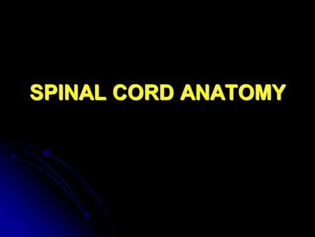 SPINAL CORD ANATOMY. General Characteristics Approx. ½ meter in length. Approx. ½ meter in length. Varies from 1 to 1.5 cm in diameter. Varies from 1.