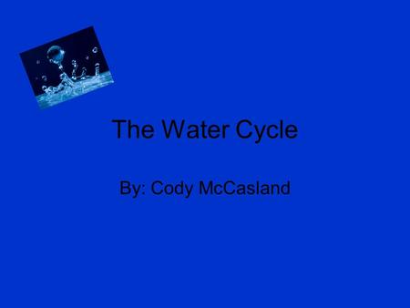 The Water Cycle By: Cody McCasland You are in a lake and a person accidentally drinks you up from the lake.
