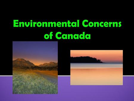  1. Acid Rain  2. Pollution of the Great Lakes  3. Extraction and Use of Natural Resources on the Canadian Shield  4. Timber Industry in Canada.