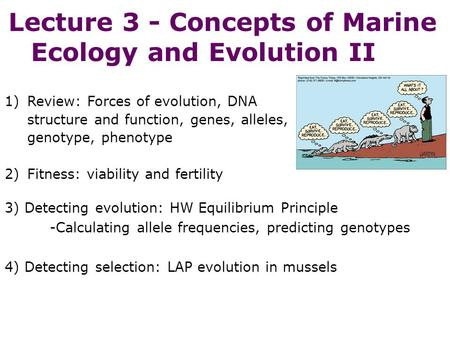 Lecture 3 - Concepts of Marine Ecology and Evolution II 3) Detecting evolution: HW Equilibrium Principle -Calculating allele frequencies, predicting genotypes.