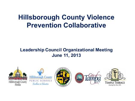 Hillsborough County Violence Prevention Collaborative Leadership Council Organizational Meeting June 11, 2013.