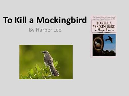 To kill a mockingbird stereotypes