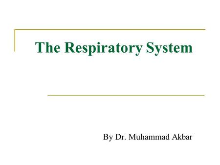 The Respiratory System By Dr. Muhammad Akbar. Respiratory System Functions 1. Supplies the body with oxygen and disposes of carbon dioxide 2. Filters.