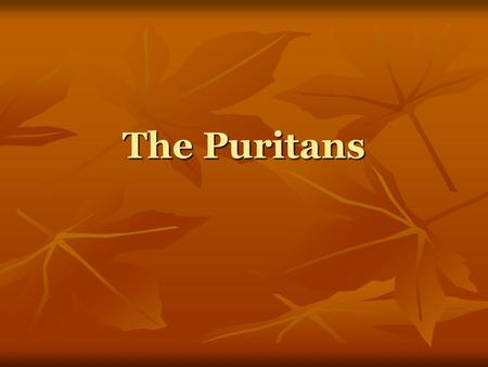 The Puritans. Who were the Puritans? Puritans were a branch of the Protestant church Puritans were a branch of the Protestant church Their movement began.