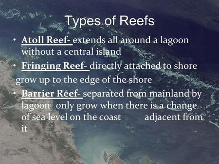 Types of Reefs Atoll Reef- extends all around a lagoon without a central island Fringing Reef- directly attached to shore grow up to the edge of the shore.