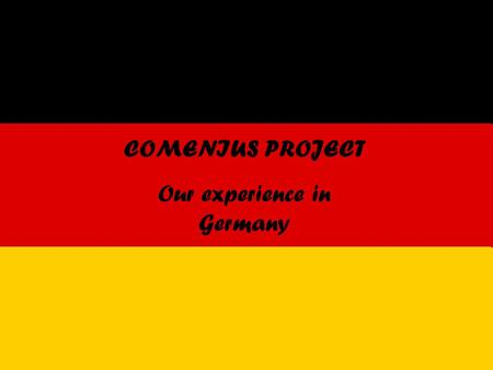 COMENIUS PROJECT Our experience in Germany. The Italian Group.