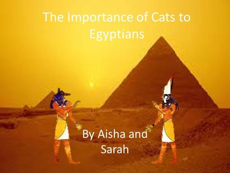 The Importance of Cats to Egyptians By Aisha and Sarah.