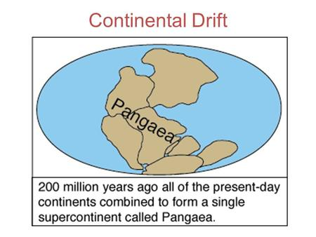 Continental Drift. Evidence: Fossils Matching Mountain Ranges.
