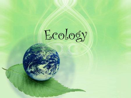 Ecology. What is ecology? The study of interactions between organisms and their environment Remember: Cell  Tissue  Organ  Organ System  Organism.