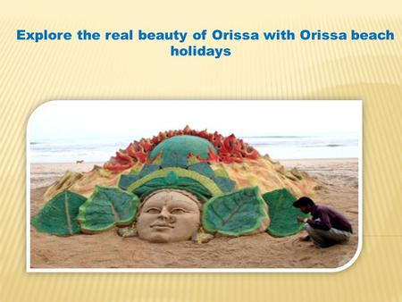 Explore the real beauty of Orissa with Orissa beach holidays.