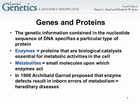 1 Genes and Proteins The genetic information contained in the nucleotide sequence of DNA specifies a particular type of protein Enzymes = proteins that.