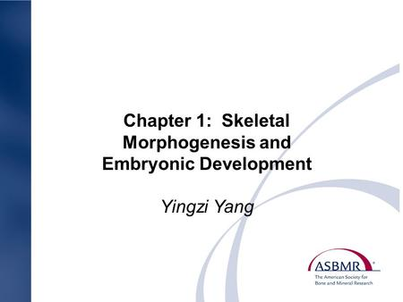 Chapter 1: Skeletal Morphogenesis and Embryonic Development Yingzi Yang.