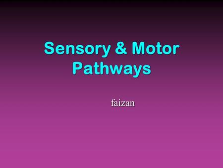 Sensory & Motor Pathways