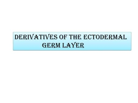 Derivatives of the ectodermal