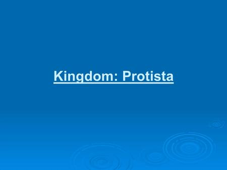 "Kingdom: Protista. Phylum: Protista Eukaryotic Most are unicellular ""Pond water critters"""