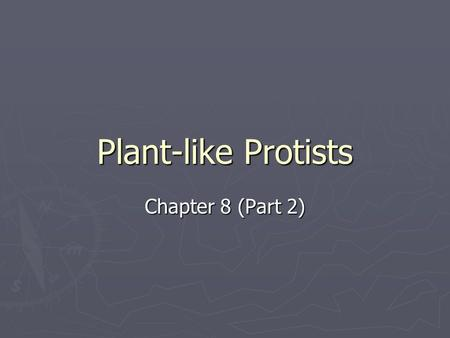 Plant-like Protists Chapter 8 (Part 2).