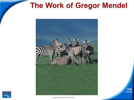 Slide 1 of 32 Copyright Pearson Prentice Hall 11-1 The Work of Gregor Mendel The Work of Gregor Mendel.