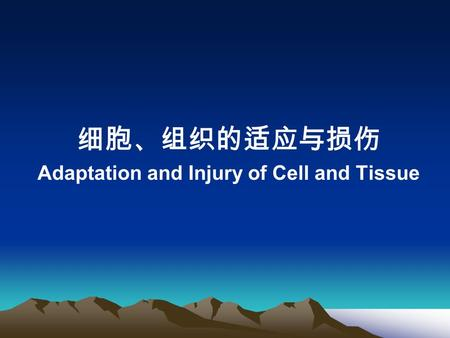 Adaptation and Injury of Cell and Tissue