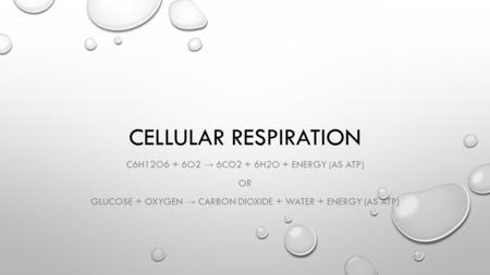 CELLULAR RESPIRATION C6H12O6 + 6O2 → 6CO2 + 6H2O + ENERGY (AS ATP) OR GLUCOSE + OXYGEN → CARBON DIOXIDE + WATER + ENERGY (AS ATP)