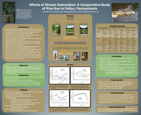Effects of Stream Restoration: A Comparative Study of Pine Run in Felton, Pennsylvania Luke Mummert, Department of Biological Sciences, York College of.