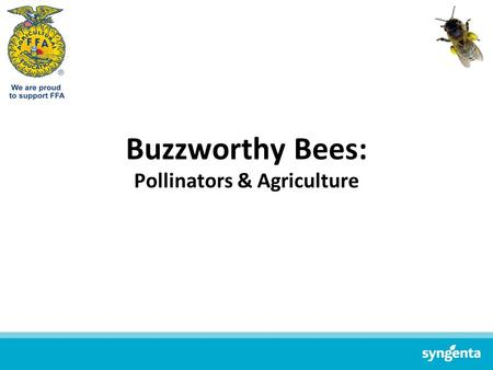 Buzzworthy Bees: Pollinators & Agriculture. The Importance of Pollinators.