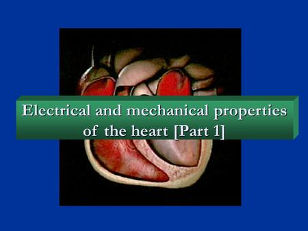 Electrical and mechanical properties of the heart [Part 1]