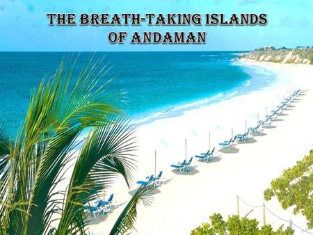 Andaman- an enchanting that enchants Andaman Islands, with its pristine blue waters, panoramic views, and clusters of smaller islands, make up the enchanting.