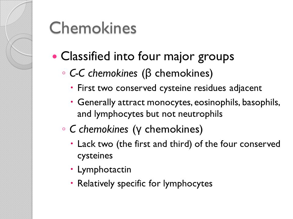 Chemokines Classified into four major groups ◦ CX3C chemokines  Contain three amino acids between the two cysteines  Fractalkine  Two forms  Cell surface-bound protein  Soluble form