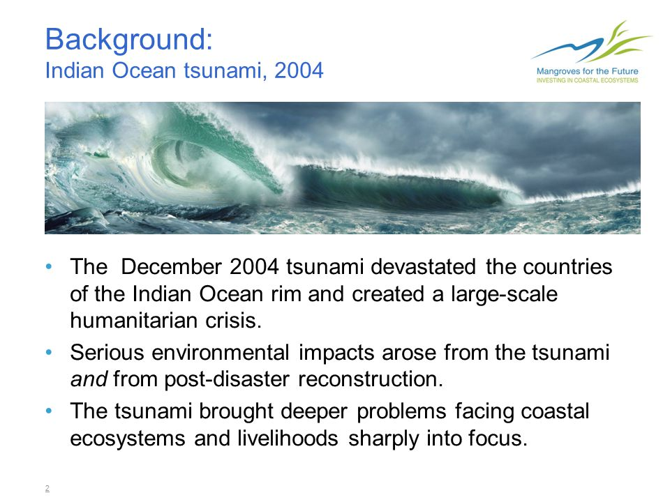 3 Root causes Coastal areas were already fragile from decades of mangrove clearing, coral reefs damage, over-fishing and pollution.