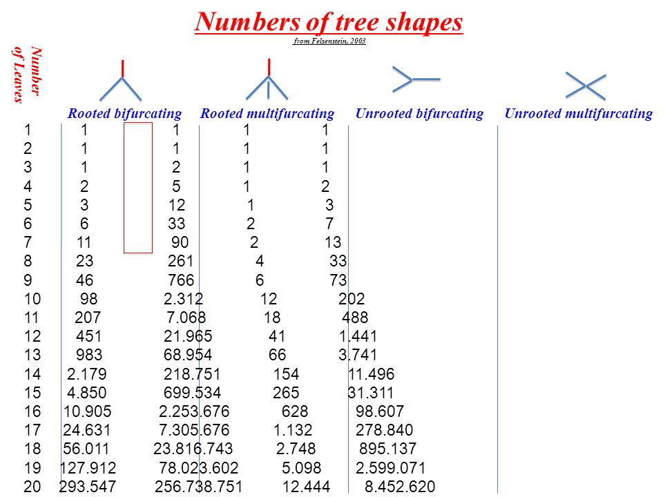 Pruefer Code: Number of Spanning trees on labeled nodes Aigner & Ziegler Proofs from the Book chapt.