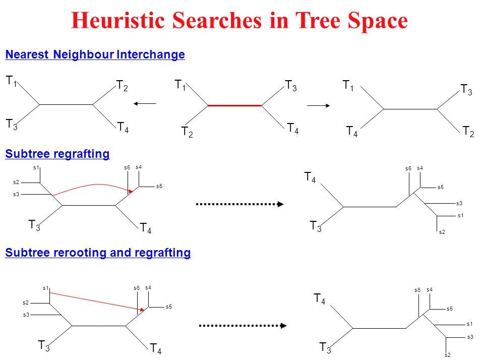 Counting Pedigrees 1 extant individual, discrete generations, ancestors sex-labelled?: 0 1 2 1214 3