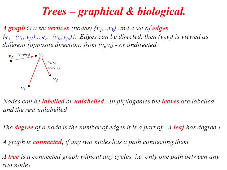 Trees & phylogenies.A tree with k nodes has k-1 edges.