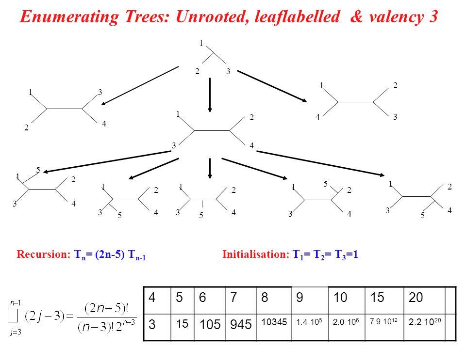 Number of leaf labelled phylogenies with arbitrary valencies 2 1 3 1 4 2 3 1 2 3 4 1 2 3 4 1 2 3 4 Recursion: R n,k = (n+k-3) R n-1,k-1 + k R n-1,k Initialisation: R n,1 =1, R n,n-2 =T n n –number of leaves, k – number of internal nodes k n k=n-2 k=1 Felsenstein, 1979, Artemisa Labi (2007 – summer project