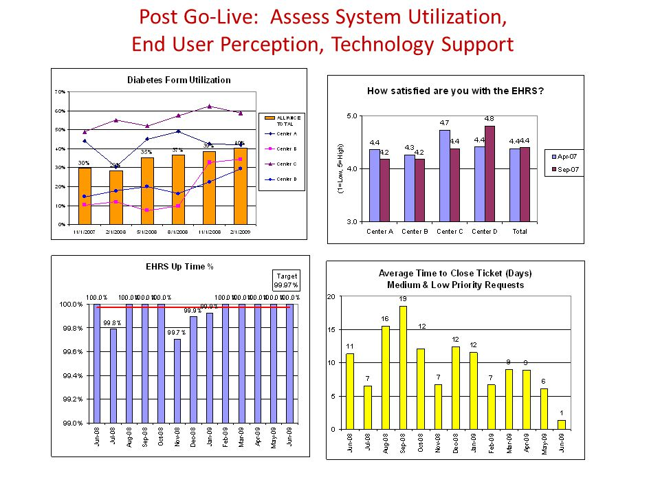 Post Go-Live: Assess System Utilization, End User Perception, Technology Support