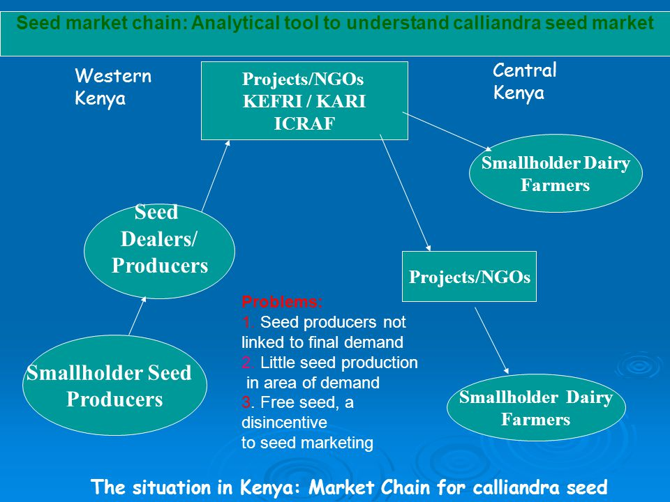 Projects/NGOs KEFRI / KARI ICRAF Smallholder Dairy Farmers Projects/NGOs Smallholder Dairy Farmers Small Seed Producers Seed Dealers Western Kenya Central Kenya Linking farmers to buyers: Market Chain for calliandra seed Dairy coops & societies Seed stockists Smallholder Seed Producers Seed market chain: ICRAF interventions- improving market linkages
