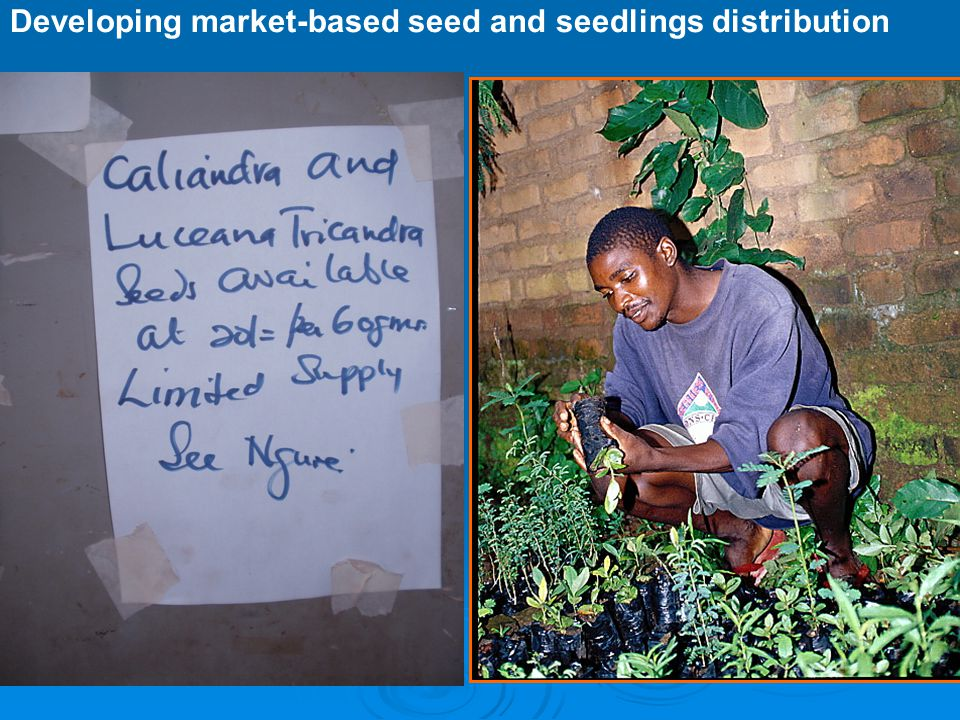 Challenges  Many of the tree seed dealers are unable to meet the requirements by Kenya Plant Health Inspectorate Services (KEPHIS)  Whose responsibility is it to ensure seed dealers meet quality standards and adhere to business ethics in a decentralised system.