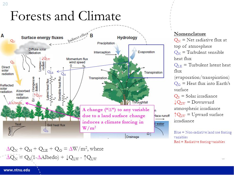 21 Forests and Climate: From Local to Global  Evaporative cooling decreases local surface air temps by increasing the ratio of transmitted surface latent heat to sensible heat flux (Bowen ratio)  But heat in atmosphere is distributed and returns to the surface elsewhere, thus there cannot be a global warming from this effect  Ban-Weiss et al., Env.