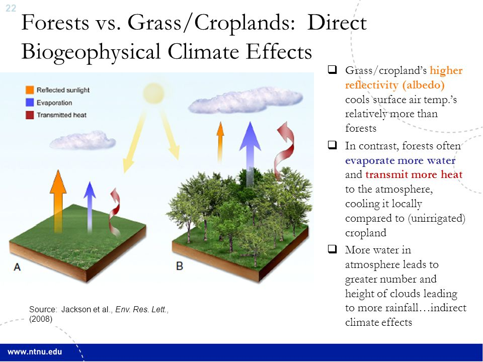 23 Boreal Forest Change & Climate Change  Bala et al., PNAS (2007): Simulation  Conversion of all forested areas to cropland areas in boreal regions:  Increases in both surface and TOA albedo dominate over decreases in evapotranspiration (latent heat fluxes), leading to net cooling