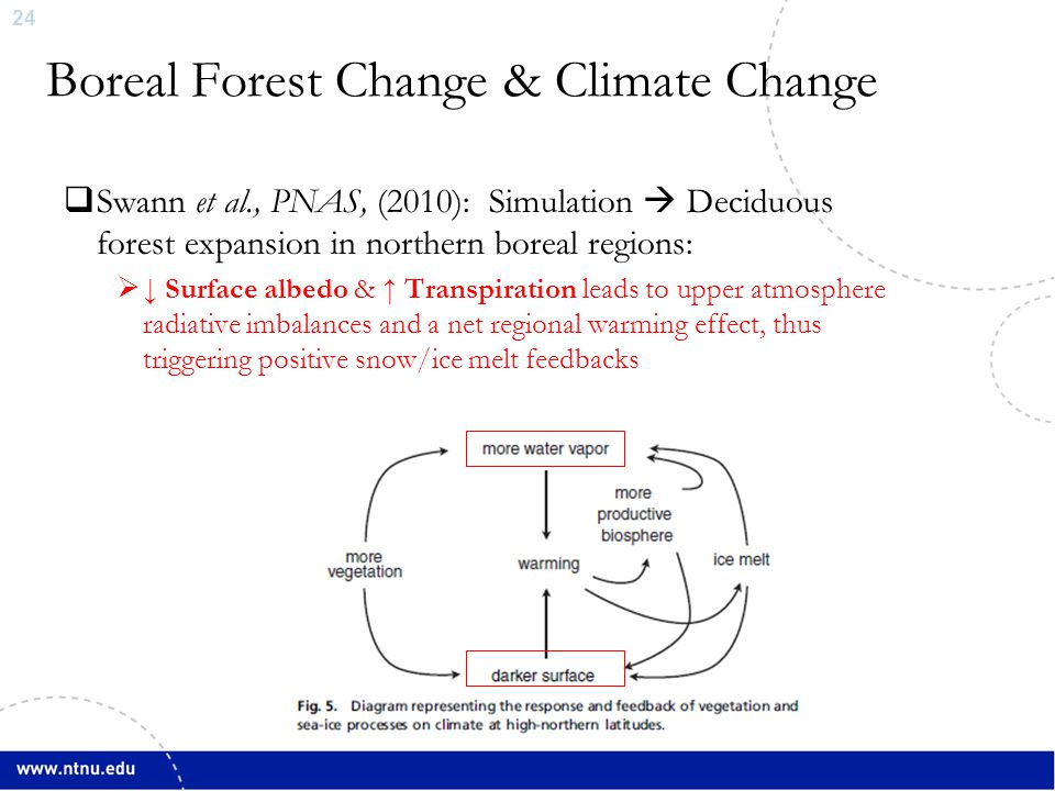 25 Assessing Boreal Forest Change and Climate Impact  Full assessments of land surface-atmosphere interactions require sophisticated climate models with interactive terrestrial biospheres  Pielke Sr.