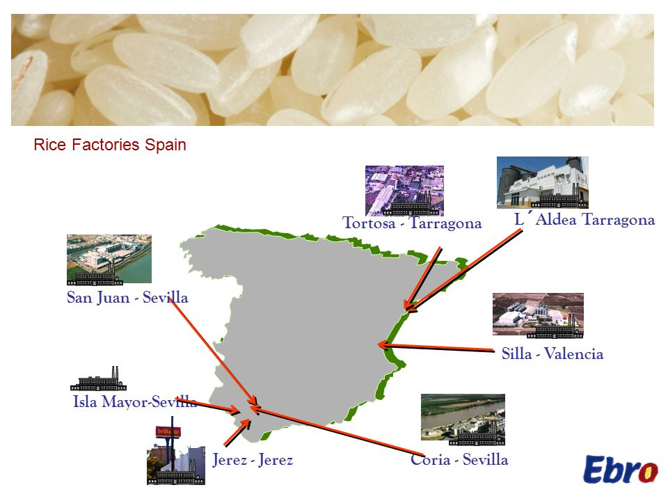 Rice Factories EU.Our factories in the European Union have: Milling capacity of: 400.000 mt/annum.
