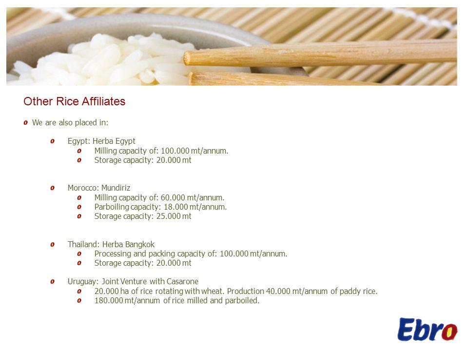 Other Rice Affiliates Herba Bangkok Uruguay