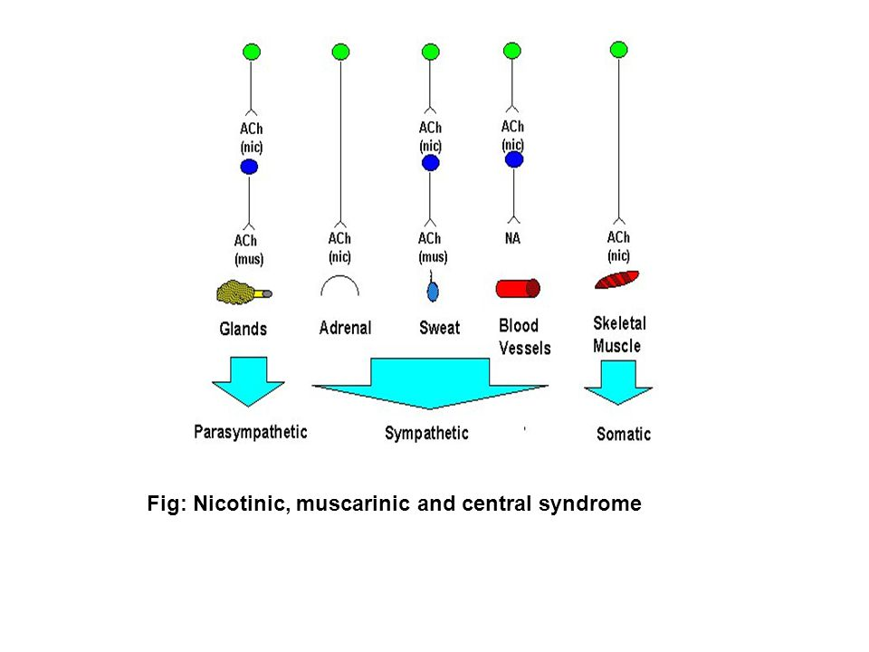 Fig: Nicotinic, muscarinic and central syndrome
