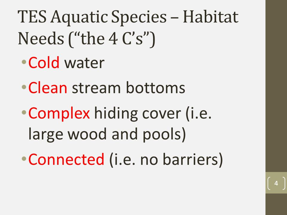 TES Aquatic Species - Legal Requirements Endangered Species Act -consultation requirements vary -Some forests have programmatic agreements with regulatory agencies, some don't -Onus is on the unit fish biologist to check on suppression activities and determine if consultation is needed 5