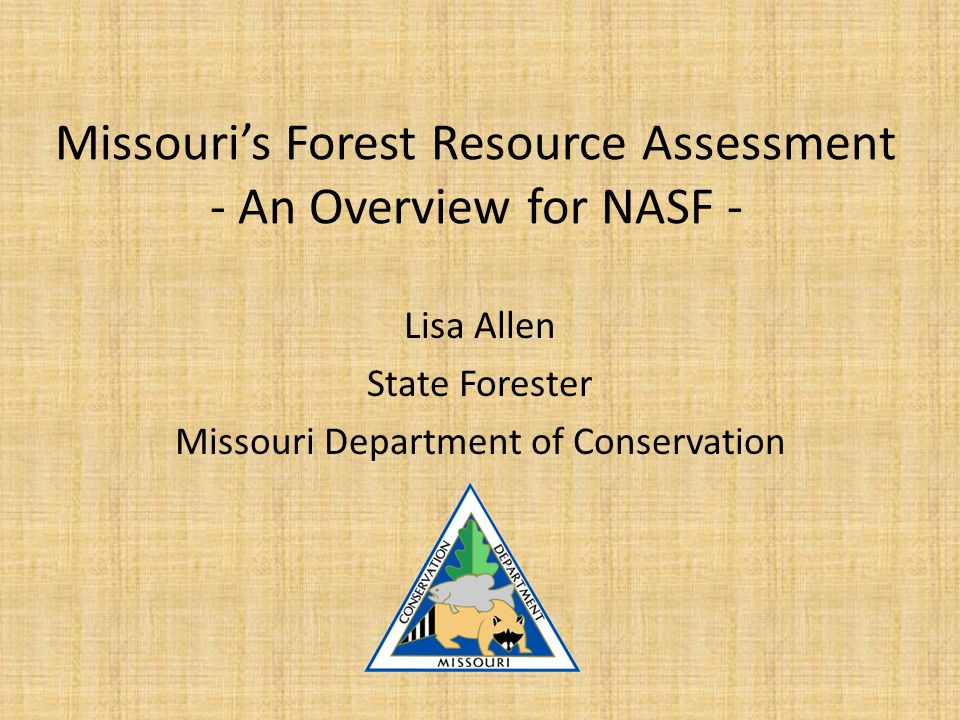 Minimum Requirements for Assessments Forest Conditions and Trends Forest Resource Threats Forest Benefits and Services Partner and Stakeholder involvement Priority Forest Areas Multi State Priorities Existing Statewide Plans