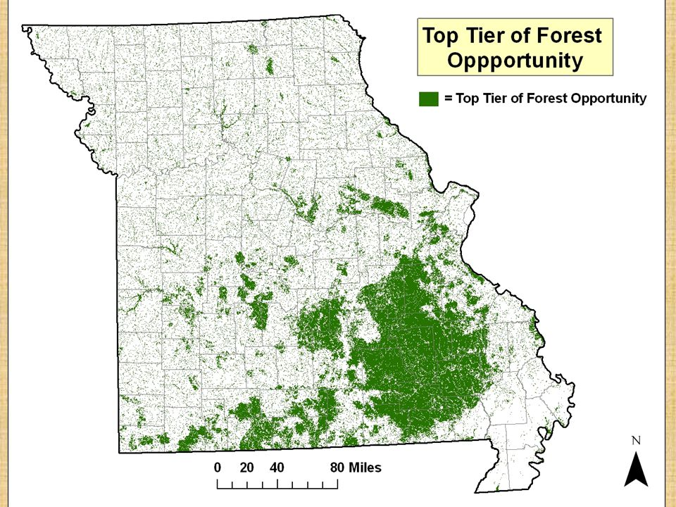 Step Two: Delineate Priority Forest Landscapes 1.Forest Opportunity Model is applied to 12 Digit HUC watersheds.
